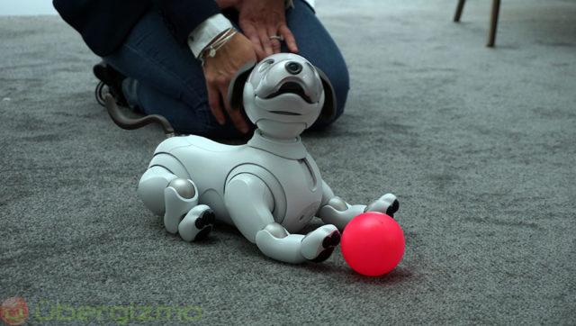 ソニー、Aiboロボット犬の米国価格を正式に発表